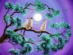 Triple Cat in Moonlight