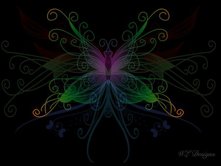 Abstracted Butterfly - colorful, butterfly, color, neon, abstract, dark, multicolor, 3d, darkness, black