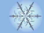 800 JLM snowflake