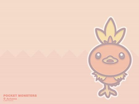 Torchic - cute, fire, torchic, may, pokemon, chick