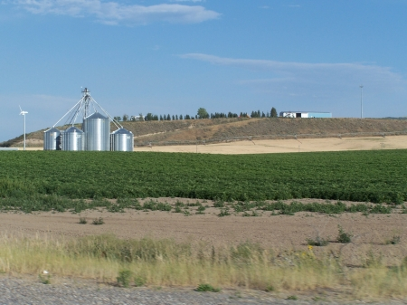 Potato Crop, Ririe, idaho - Silos, Sky, Farms, Fields
