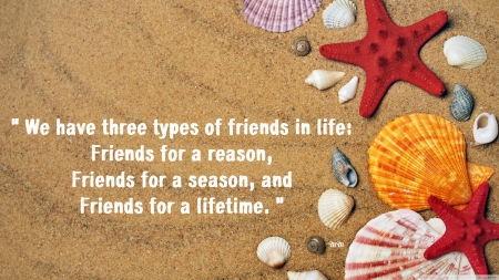 Friends - thoughts, words, beach, sand, friendship, quotes, nature, shells, friends