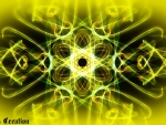 Yellow Power ♥