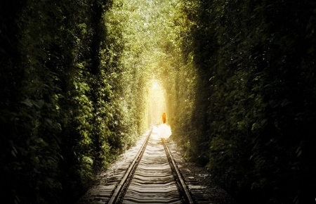 Follow the Light - forest, railroad, follow, pathway, sunlight, trees, tracks, women