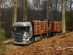 scania logging truck