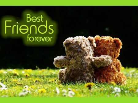Best Friends Forever Teddy Bears Bears Animals Background