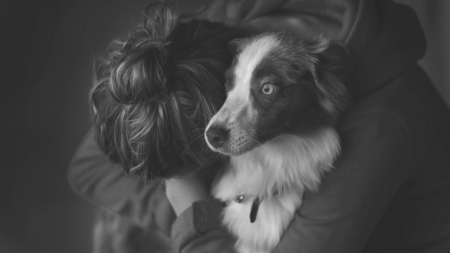 For Zuri - photography, girl, black, white, woman, dog, animal