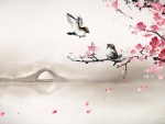 Sakura Blossoms and Birds
