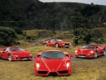 A Herd of Red Ferraris