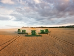 flying v of combines in wheat field