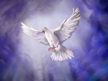 Peace - spirit, dove, freedom, harmony