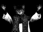may the cat priest be with you