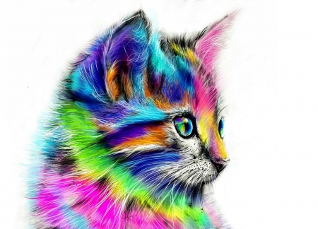 Rainbow kitten - colorful, art, luminos, rainbow, cat, shaff ocean, animal, cute, fantasy, green, white, pink, pisica, blue