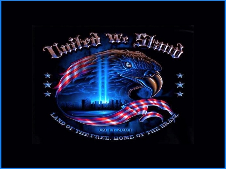 United we stand - red, eagle, America, tribute, white, blue