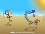 ROAD RUNNER WILE E COYOTE
