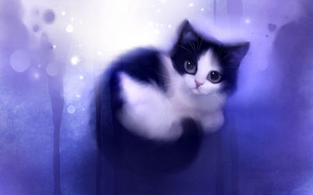 Digital Kitten F 3d And Cg Abstract Background