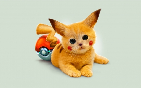 Pikachu - red, yellow, pokemon, cat, pikachu, cute, fantasy, kitten, pisica
