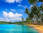 Tropical beach and trees