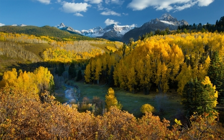 Autumn in Colorado Forest - landscape, colors, leaves, mountains, trees, river