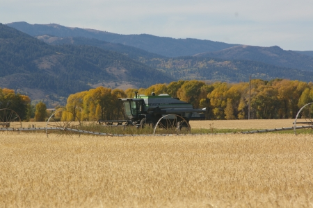Gleaner on last Harvest, Victor, Idaho - Fall, Mountains, Farms, Grain, Gleaner, Implement Equipment, Autumn, Combines