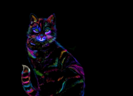 Neon Cat Fantasy Abstract Background Wallpapers On Desktop Nexus