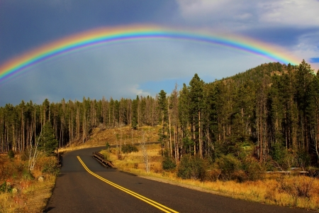 Rainbow over Roadside Forest Trees - Trees, Sky, Forests, Autumn, Rainbows, Roads, Nature