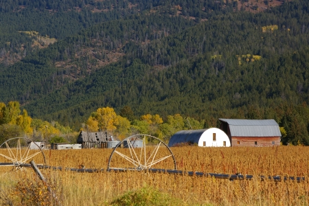 Old Homestead near Darby Canyon, Teton Valley, Idaho - Farms, Fields, Mountains, Scenic, Homesteads