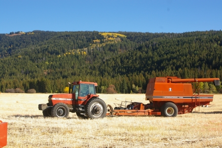 Case International Pull Type Harvester, Darby Canyon, Teton Valley, Idaho - Harvesting, Tractors, Axial Flow Pull Type Combine, Autumn, Farm Implement Equipment, Harvester, Fall, Case 7250, Case, International 1482, Farms, Fields