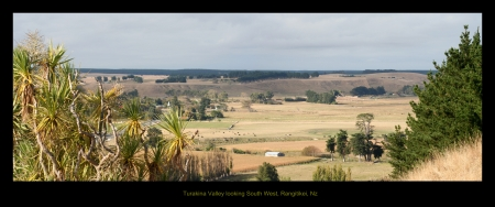 Turakina Valley, Rangitikei, Nz  - corn, new zealand, turakina, frams, south, tracks, rails