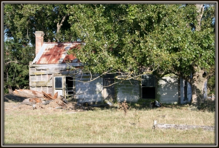 farm house by Markirikiri Stream, Rangitikei, Nz  - building, farm, new zealand, house, retreat, nature, Rangitikei, natural