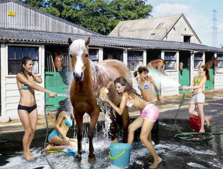Horse Wash.. - female, models, cowgirl, washing, ranch, fun, outdoors, women, horses, brunettes, girls, blondes, western, style