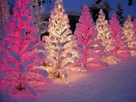 Glow of December - Christmas, glow, white, pink, lights