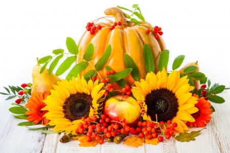 Pumpkin and Sunflowers - apple, acorns, fruit, still life, nuts, pears, leaves, sunflowers, berries, pumpkin, flowers, wood