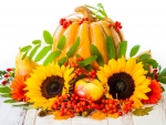 Pumpkin and Sunflowers