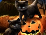 Black Kittens on Jack-O-Lantern FC