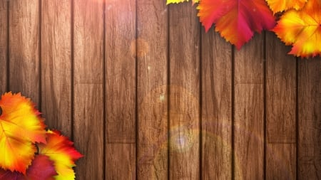 •⊰✿✿⊱• - various, autumn leaf, abstract, wallpaper