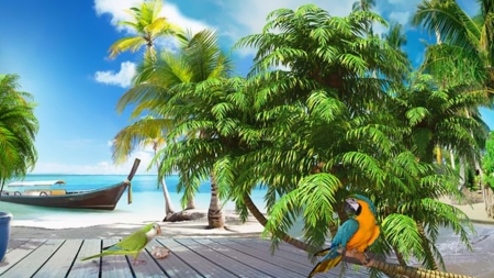 Private Island - boat, paradise, birds, parrots, island, palm trees, sea