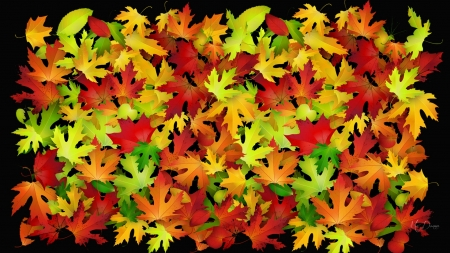 Color of Many Leaves - fall, leaves, colorful, Firefox Persona theme, bright colors, autumn