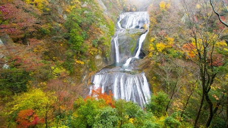 Vivid Autumn Waterfall Cascade - Fall, Waterfalls, Autumn, Nature