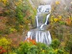 Vivid Autumn Waterfall Cascade