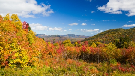 Fall In New England Mountains Nature Background Wallpapers On Desktop Nexus Image 2179954