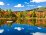 Lakeside Autumn Trees in White Mountains of New Hampshire