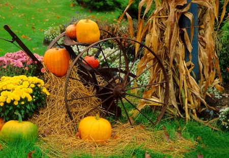 ✿⊱•╮Autumn Display╭•⊰✿ - lovely still life, fall, autumn, harvest, halloween, colors, love four seasons, straw, foods, wagon wheel, still life, photography, flowers, pumpkins