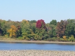 The Rancocas Creek in the Fall.
