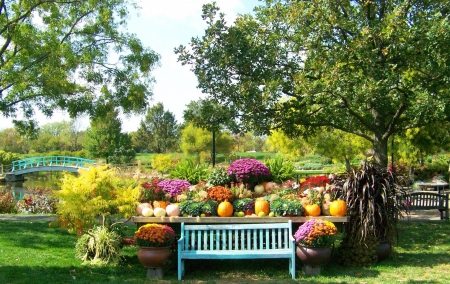 Autumn in the Park - bench, park, trees, water, bridge, benches, sidewalk, plants, flowers, river, pumpkins