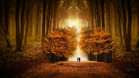 Autumn Hand in Hand - fall, autumn, collage, trees, lovers, leaves, path, walk, stroll