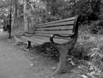 old bench black and white