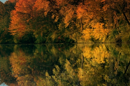 Autumn Reflection - colorful, forest, trees, reflection, nature, autumn, pond, lake