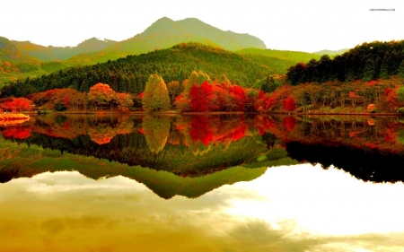 Autumn Forest in the Lake - forest, trees, reflection, nature, mountain, autumn, lake