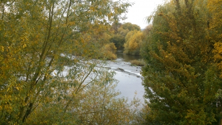 A view between... - Nature, Foto, Water, Tree, Daytime, Day, Autumn, Photography, Photo, Lahn, Outside, Afternoon, Fall, Leaf, Trees, Leafs, Photograph, River, Leaves, Snapshot